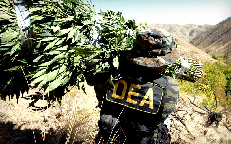 dea-war-on-drugs